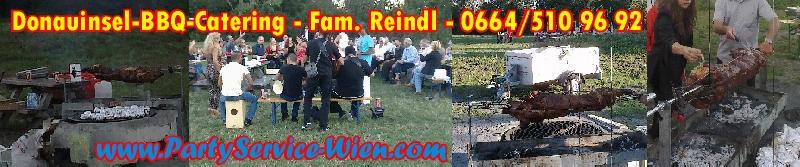 Donauinsel, Grillplatz 15, Steinspornbrücke, Hochzeit, BBQ-Catering mit Spanferkel & Zigeunermusik, PartyService